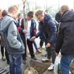 sadzenie_drzewek2